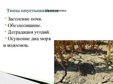 Засоление почв. Обезлесивание. Деградация угодий. Осушение дна моря и водоемов.