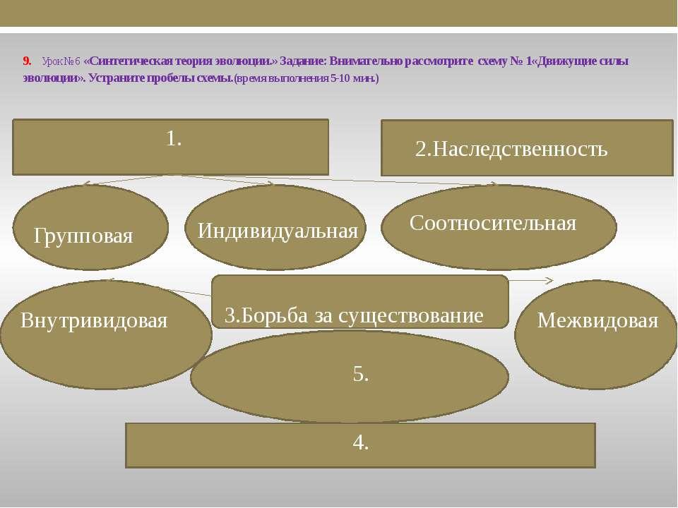 9. Урок № 6 «Синтетическая теория эволюции.» Задание: Внимательно рассмотрите...