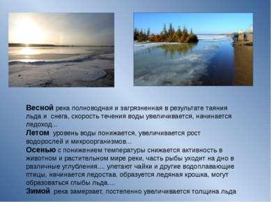 Весной река полноводная и загрязненная в результате таяния льда и снега, скор...