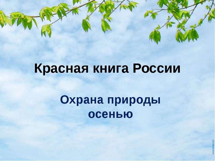 Красная книга России Охрана природы осенью