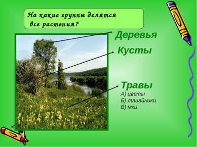 Деревья На какие группы делятся все растения? Кусты Травы А) цветы Б) лишайни...