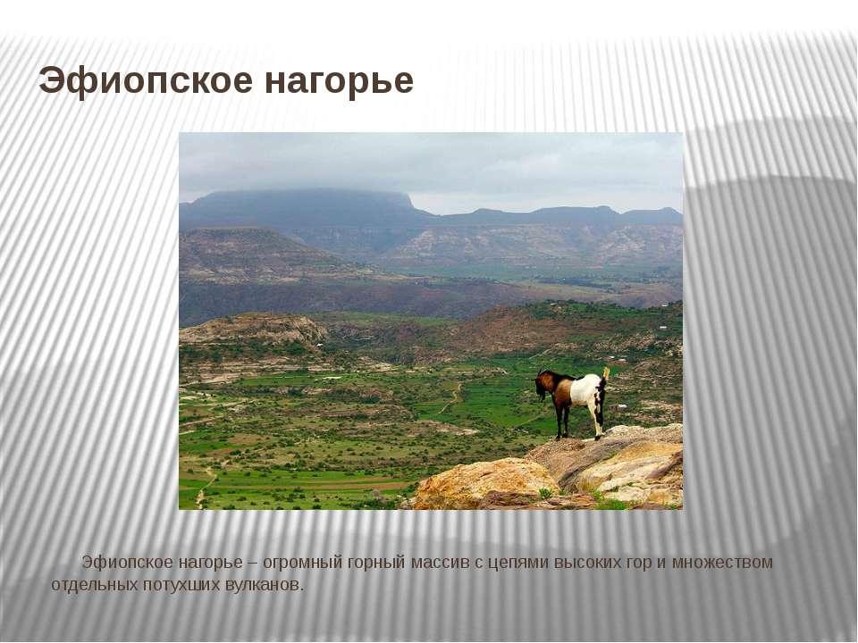 Эфиопское нагорье Эфиопское нагорье – огромный горный массив с цепями высоких...