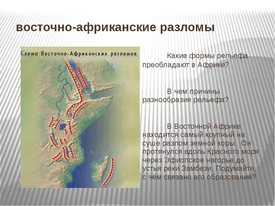 восточно-африканские разломы Какие формы рельефа преобладают в Африке? В чем ...