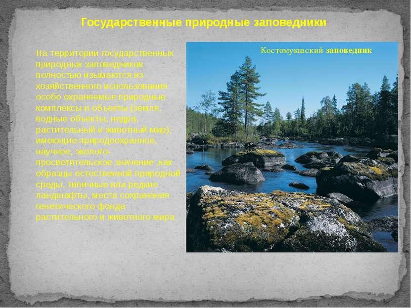 Государственные природные заповедники На территории государственных природных...