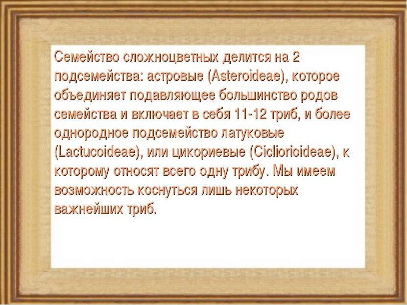 Семейство сложноцветных делится на 2 подсемейства: астровые (Asteroideae), ко...