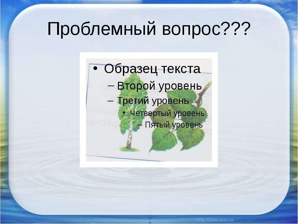 Проблемный вопрос???