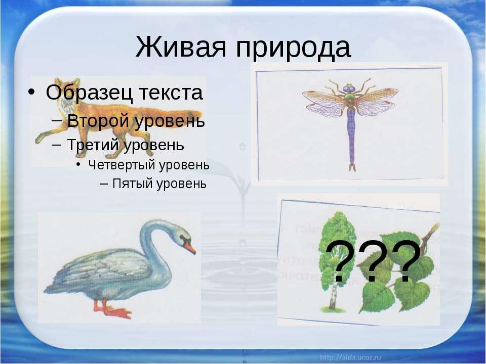Живая природа ???