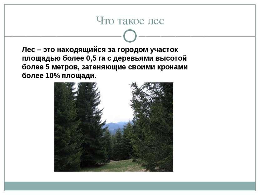 Что такое лес Лес – это находящийся за городом участок площадью более 0,5 га ...