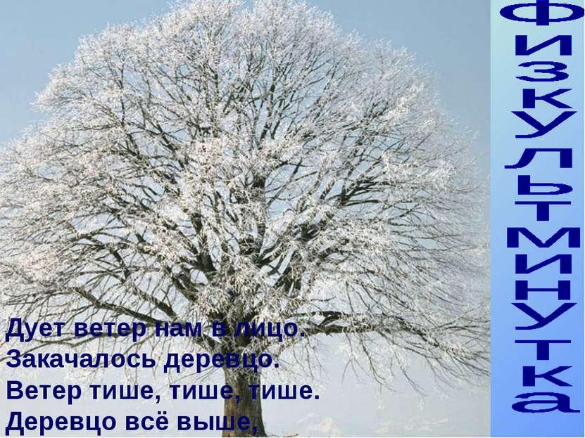 Физкультминутка Как зимуют травы и деревья Дует ветер нам в лицо. Закачалось ...