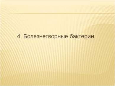 4. Болезнетворные бактерии