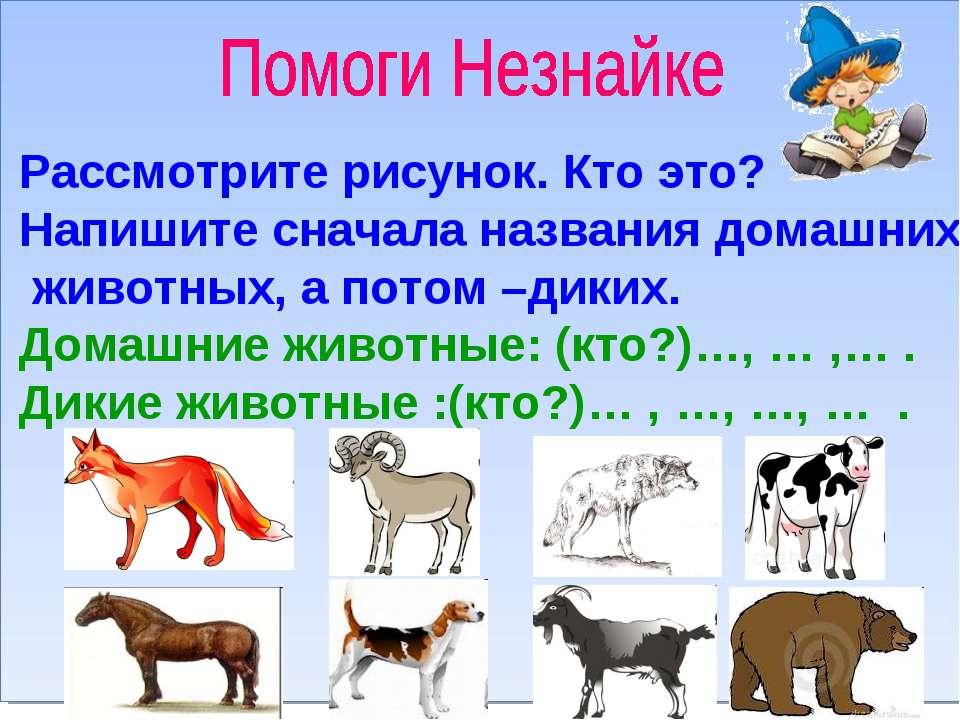 Рассмотрите рисунок. Кто это? Напишите сначала названия домашних животных, а ...