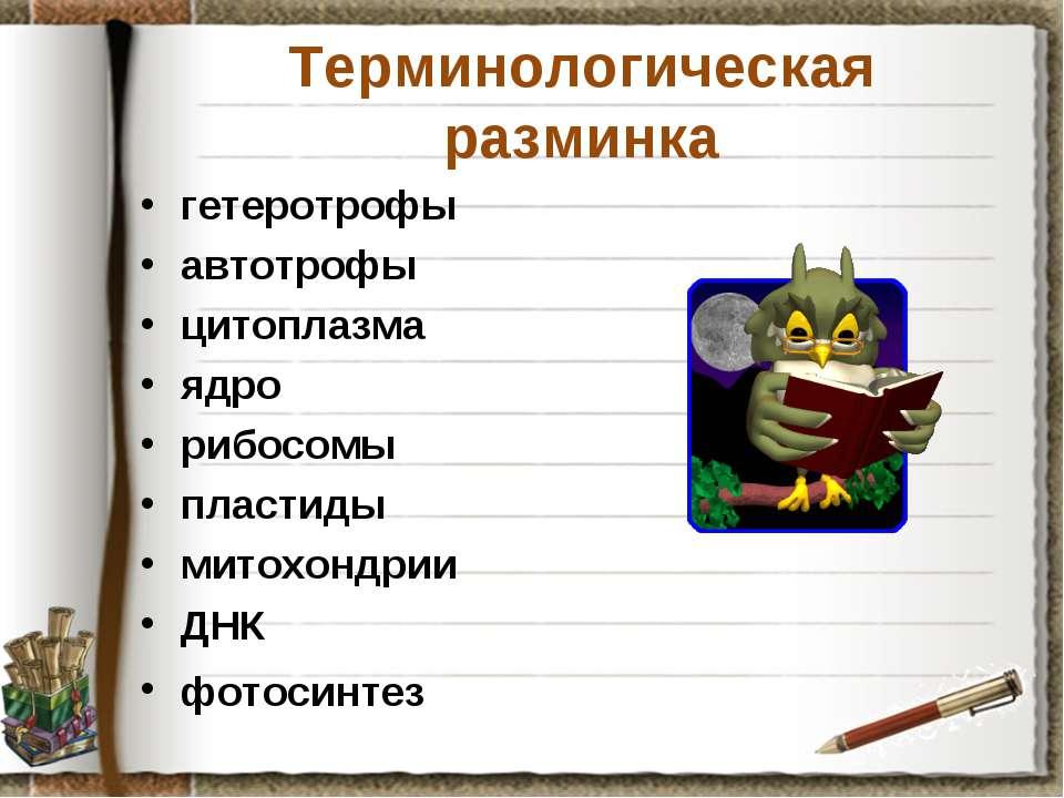 Терминологическая разминка гетеротрофы автотрофы цитоплазма ядро рибосомы пла...