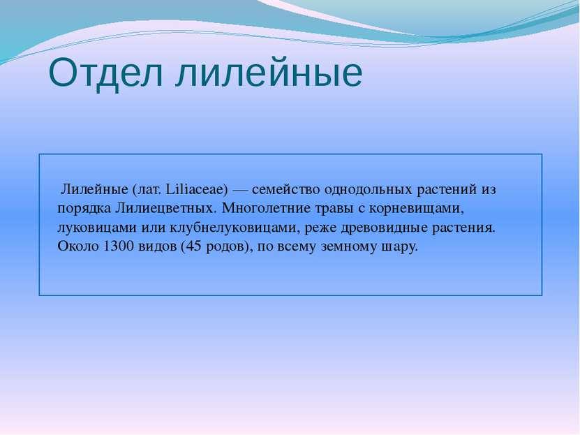 Отдел лилейные Лилейные (лат. Liliaceae) — семейство однодольных растений из ...