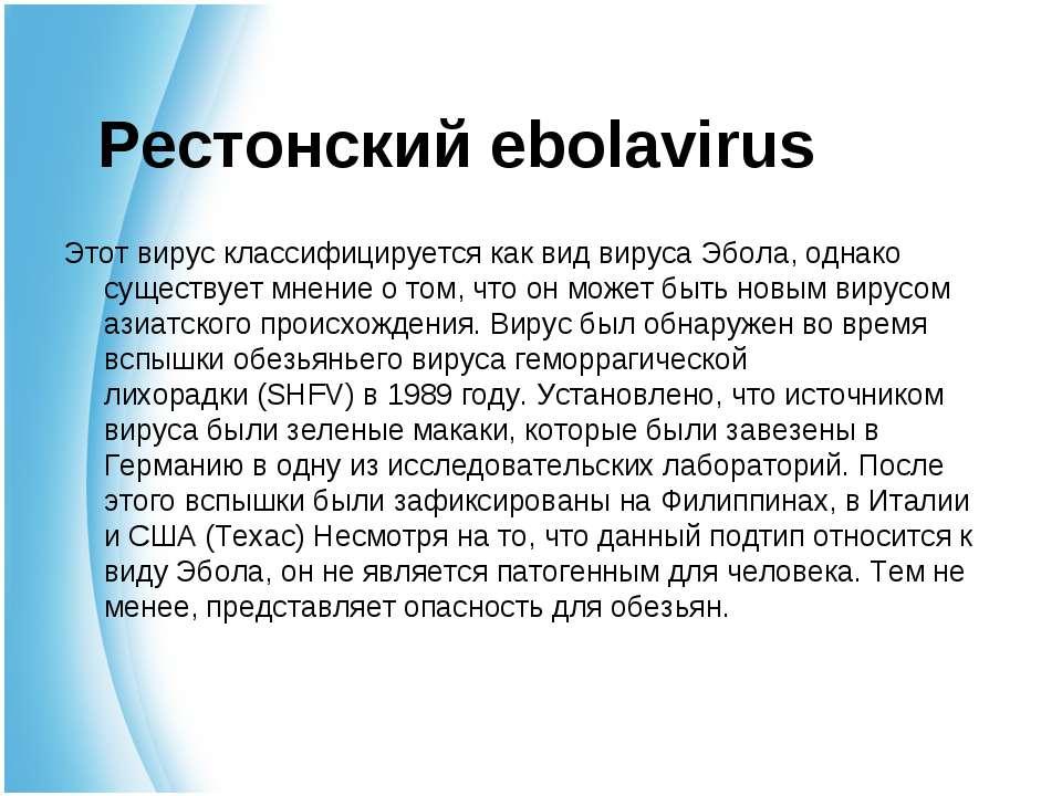 Рестонский ebolavirus Этот вирус классифицируется как вид вируса Эбола, однак...