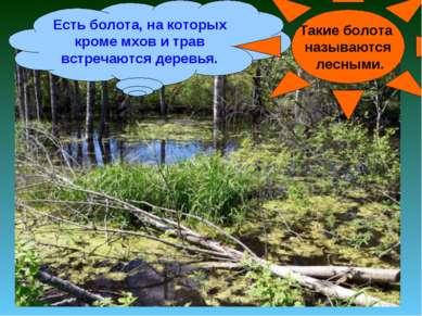 Есть болота, на которых кроме мхов и трав встречаются деревья. Такие болота н...
