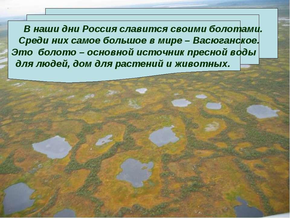 В наши дни Россия славится своими болотами. Среди них самое большое в мире – ...