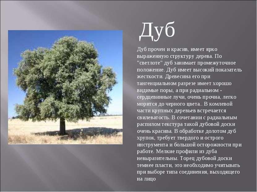 """Дуб прочен и красив, имеет ярко выраженную структуру дерева. По """"светлоте"""" ду..."""