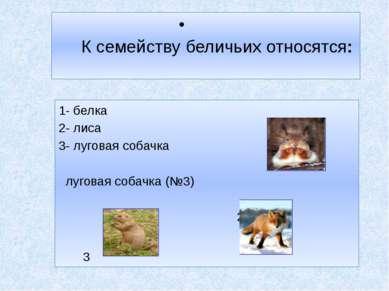 К семейству беличьих относятся: 1- белка 2- лиса 1 3- луговая собачка луговая...