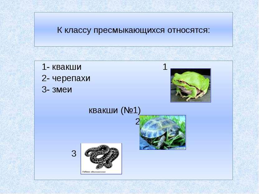 К классу пресмыкающихся относятся: 1- квакши 1 2- черепахи 3- змеи квакши (№1...