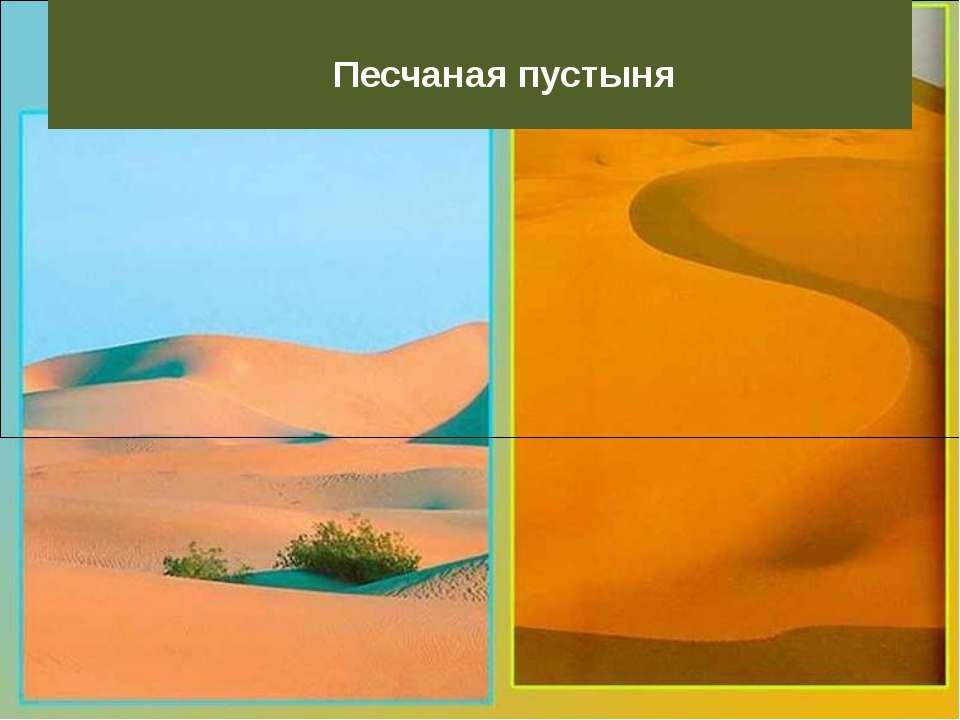 Песчаная пустыня