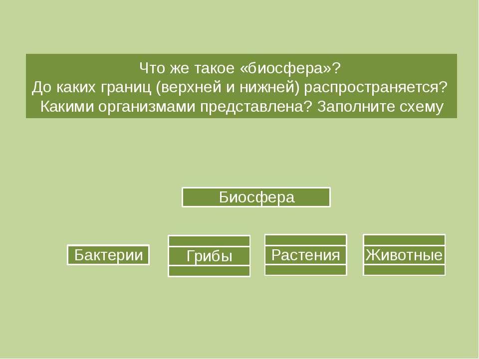 Что же такое «биосфера»? До каких границ (верхней и нижней) распространяется?...