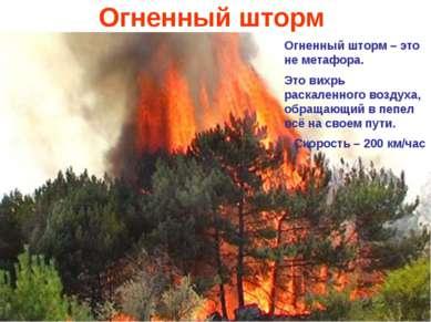 Огненный шторм Огненный шторм – это не метафора. Это вихрь раскаленного возду...