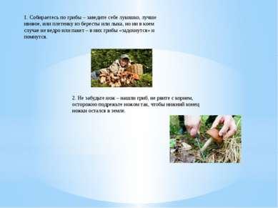 1. Собираетесь по грибы – заведите себе лукошко, лучше ивовое, или плетенку и...