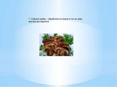 7. Собрали грибы – обработать их нужно в тот же день, они быстро портятся.