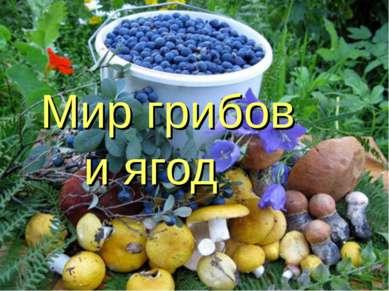 Мир грибов и ягод