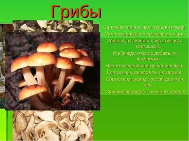 Грибы Сентябрь принёс нам грибов урожай. Соли, маринуй и в сметане их жарь, С...