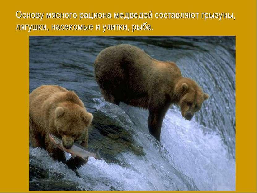 Основу мясного рациона медведей составляют грызуны, лягушки, насекомые и улит...