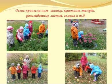Осень принесла нам- шишки, каштаны, желуди, разноцветные листья, семена и т.д.