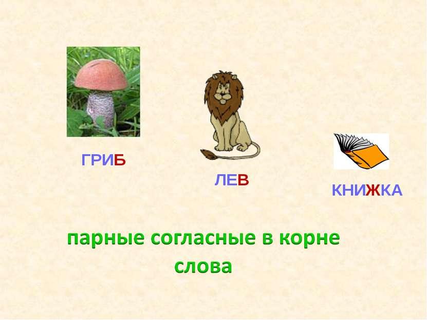 ГРИБ ЛЕВ КНИЖКА