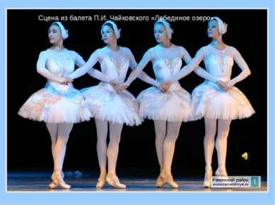 Сцена из балета П.И. Чайковского «Лебединое озеро»