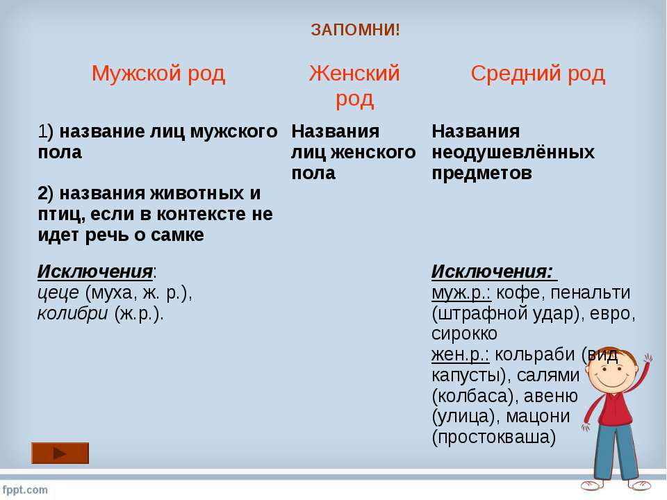 ЗАПОМНИ! Мужской род Женский род Средний род 1) название лиц мужского пола 2)...