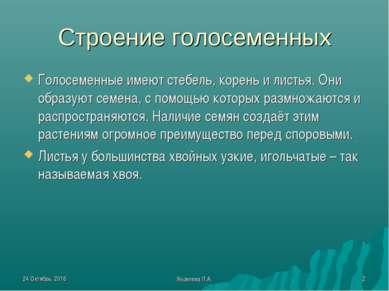 * Яковлева Л.А. * Строение голосеменных Голосеменные имеют стебель, корень и ...