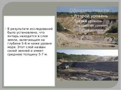 В результате исследований было установлено, что янтарь находится в слое земли...