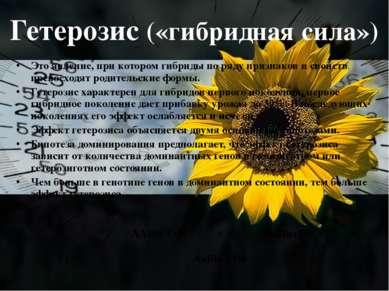 Гетерозис («гибридная сила») Это явление, при котором гибриды по ряду признак...