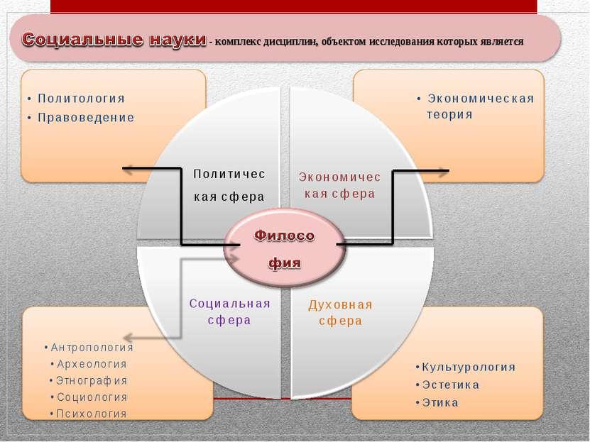 комплекс дисциплин, объектом которых является общество