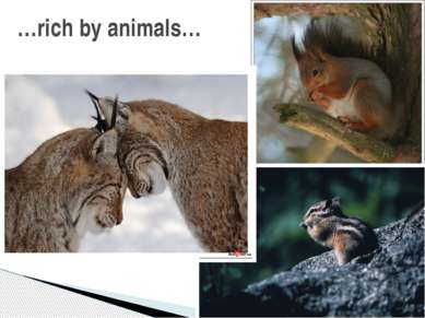 …rich by animals…