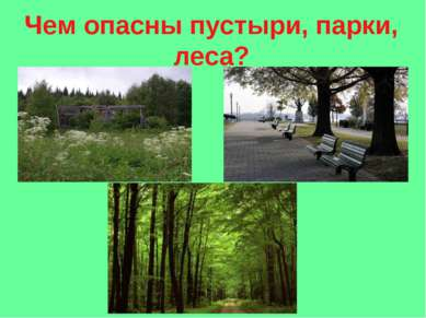 Чем опасны пустыри, парки, леса?