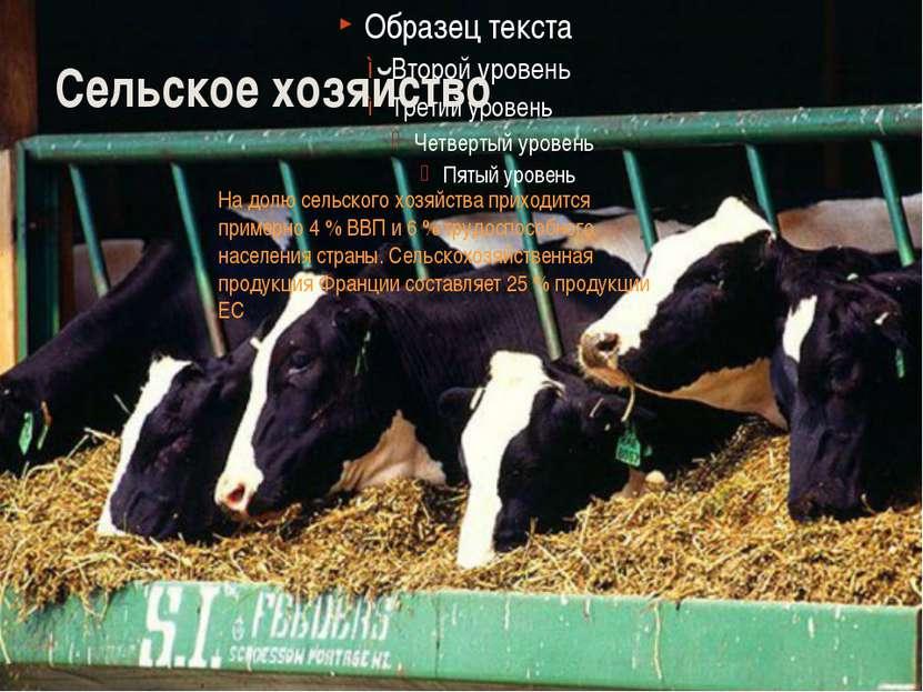 Сельское хозяйство На долю сельского хозяйства приходится примерно 4 % ВВП и ...