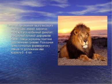 Причиной присвоения такого высокого титула- царь зверей, вероятно, послужил е...