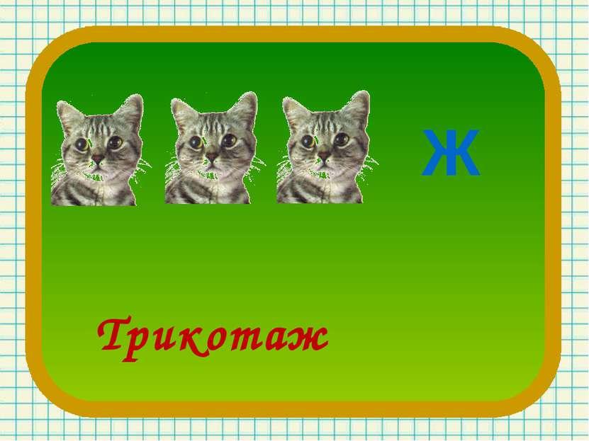 Ж Трикотаж