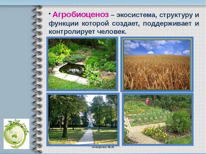 Агробиоценоз – экосистема, структуру и функции которой создает, поддерживает ...