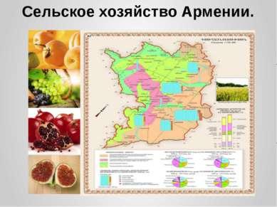 Сельское хозяйство Армении.
