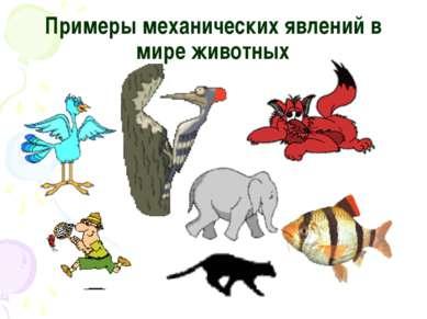 Примеры механических явлений в мире животных