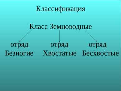 Классификация Класс Земноводные отряд отряд отряд Безногие Хвостатые Бесхвостые