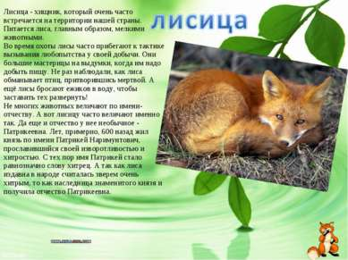 Лисица- хищник, который очень часто встречается на территории нашей страны. ...