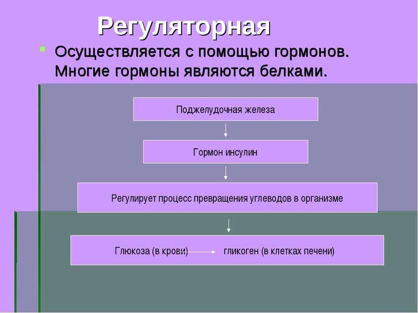 Регуляторная Осуществляется с помощью гормонов. Многие гормоны являются белка...